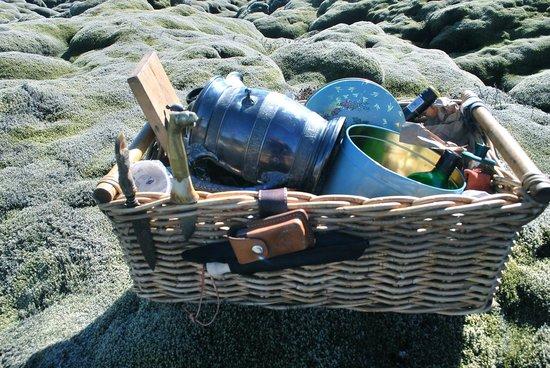 Goecco : Iceland picnic