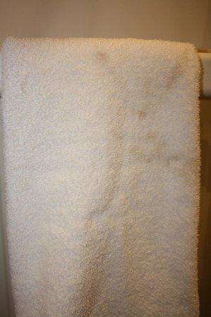28 York Place Hotel: Asciugamani trovati macchiati