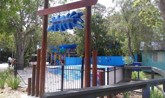 BIG4 Tweed Billabong Holiday Park : Kids Area