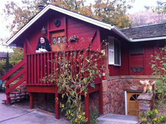 """Under The Eaves : La stanza, un piccolo """"cottage""""in miniatura sul retro della struttura"""