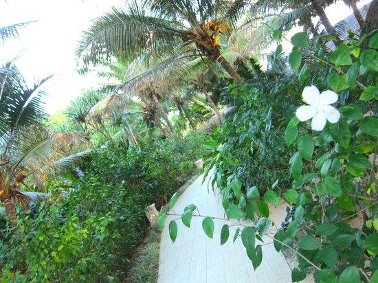 Breakas Beach Resort Vanuatu: entranceway when we arrived