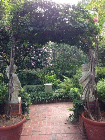 Fern display picture of biedenharn museum gardens monroe tripadvisor for The gardens at monroe