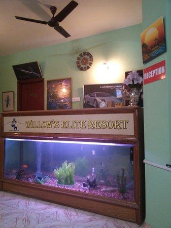 Willows Elite Resort : Reception