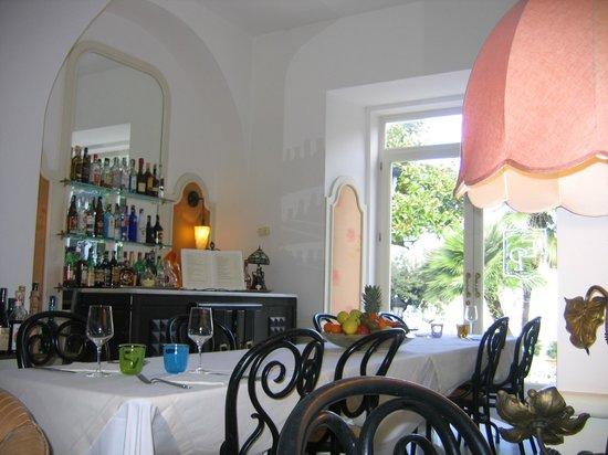 Luxury Villa Excelsior Parco : Lounge