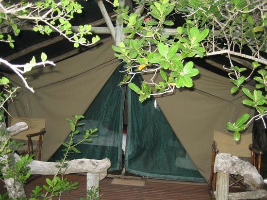 Sibuya Game Reserve & Tented Camp : Tent - Forest Camp