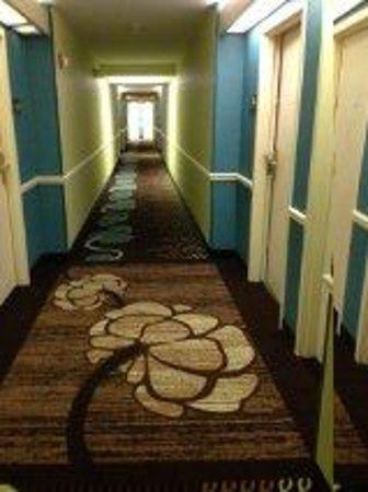 Hampton Inn and Suites Bayside Venice: hallway
