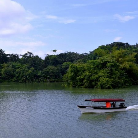 Monkey Lodge Panama: The tour boat...