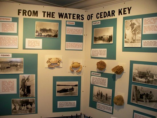 Cedar Key Historical Society Museum : Cedar Key Waters