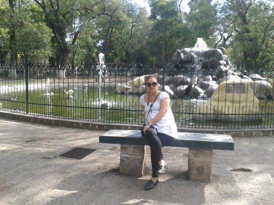 Diana del Bosque: El parque es agradable