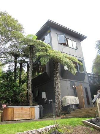 The Treehouse: the 'treehouse'
