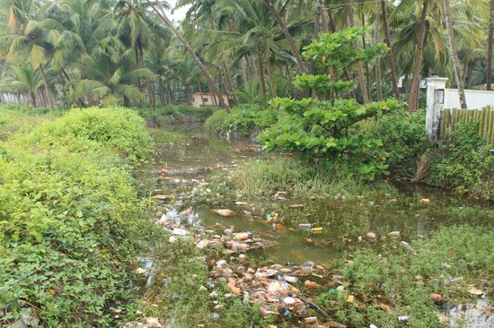 Shantitheeram: dirty pond just outside
