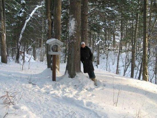 Ugorskaya Dolina : В лесу у отеля