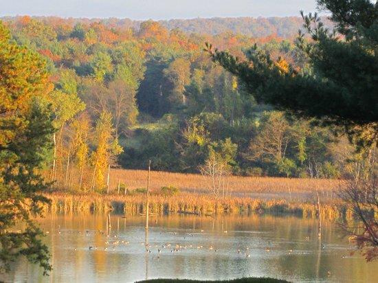 Toftrees Golf Resort: Beautiful Pennsylvania Fall Day
