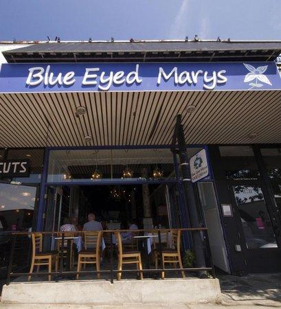 Blue Eyed Marys Photo