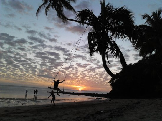 The Beachouse : Sunset and the legendary tree-swing