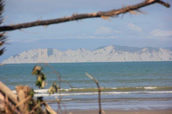 Waikanae Beach Motel: Sight from the beach