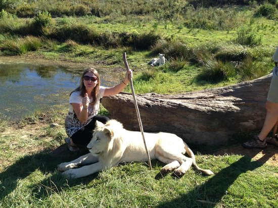 Zorgfontein Game Farm: Lion in background checking me out
