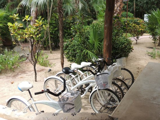 Mahekal Beach Resort: garden and bikes closed to lobby