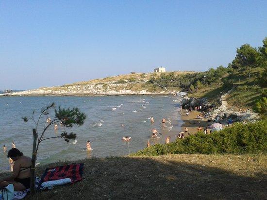 Residence Alba Chiara: la spiaggia