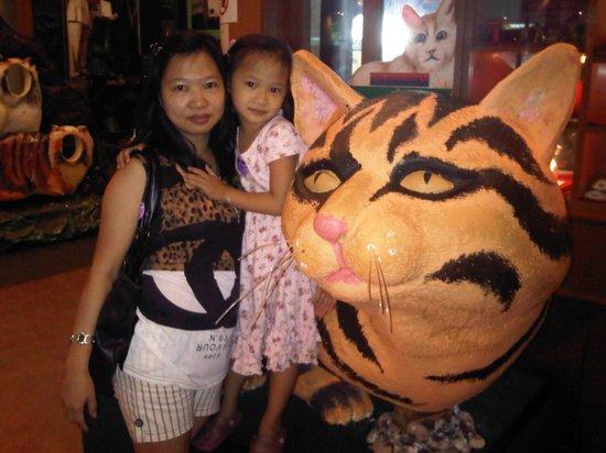Cat Museum : big cat
