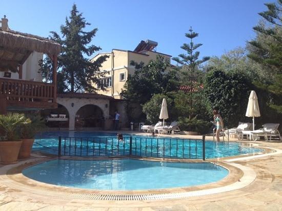 Asfiya Hotel : poolside