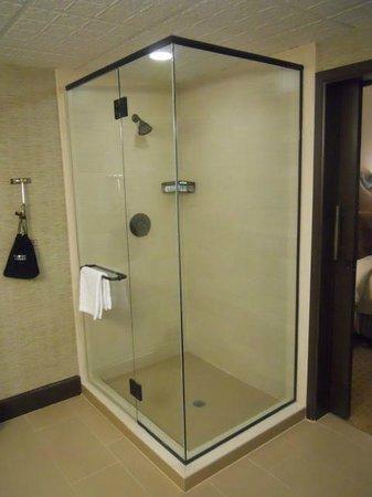 Omni Austin Hotel Downtown: Shower in Suite Bathroom (remarkably, no bath)