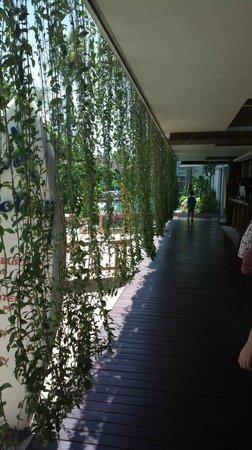 Bliss Surfer Hotel: near pool
