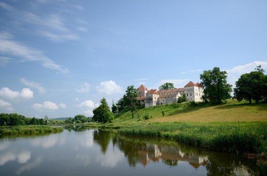 Svirzh Castle: Вид на замок с берега озера
