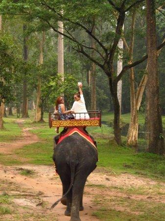 Siem Reap Rooms - Day Tours: The Morning Trek to Bayon