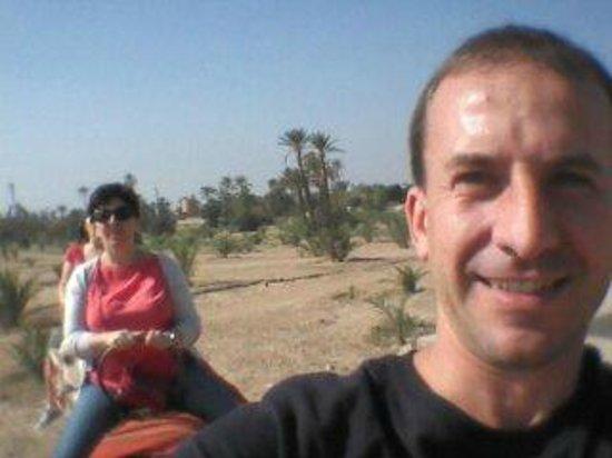 Riad Al Nour: palmeraie