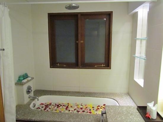 Arma Museum & Resort : petit bain pour notre arrivée