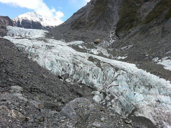 Fox Glacier Hiking Trails: Fox Glacier