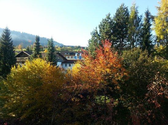 Hotel Ludwig Royal: Herbstimmung