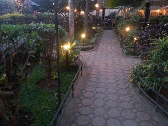 Springlands Hotel: The grounds at dusk