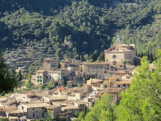 Royal Carthusian Monastery (Real Cartuja) : Valldemossa, Majorca