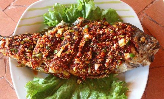 Kimchi N Sushi LTD