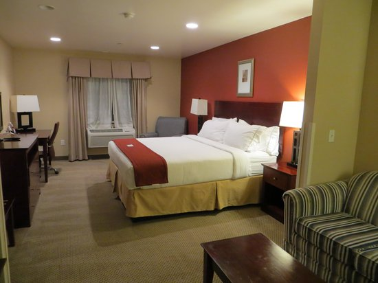 Holiday Inn Express Hotel & Suites Los Angeles Airport Hawthorne: 1 King Bed Suite