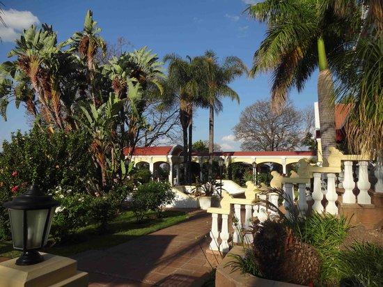 Casta Diva : Garden view