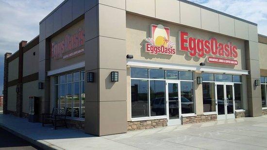 Eggs Oasis