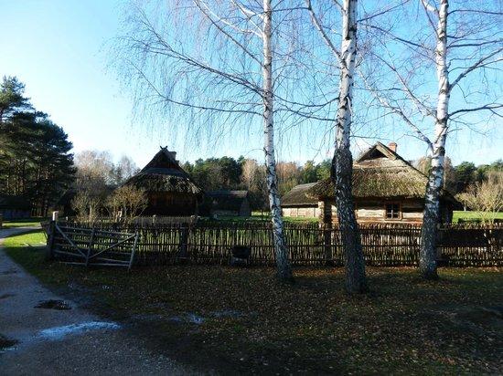 Rumsiskes Open-Air Museum: Одна из частей экспозиции