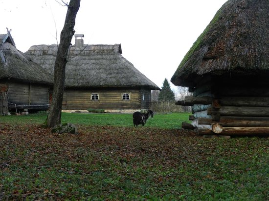Rumsiskes Open-Air Museum: Dzukija