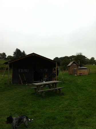 Feather Down Farms at Pant y March Farm : The Accommodation!