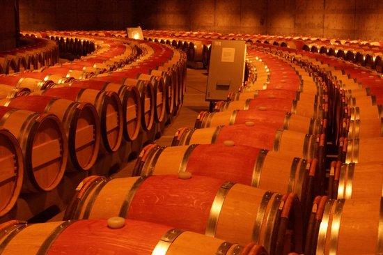 Opus One Winery: Barrels, and more barrels