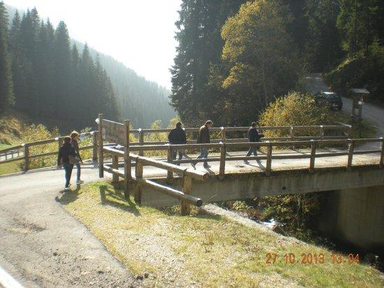 Agritur Malga Lozen : passato il ponte si sale per circa 800 metri
