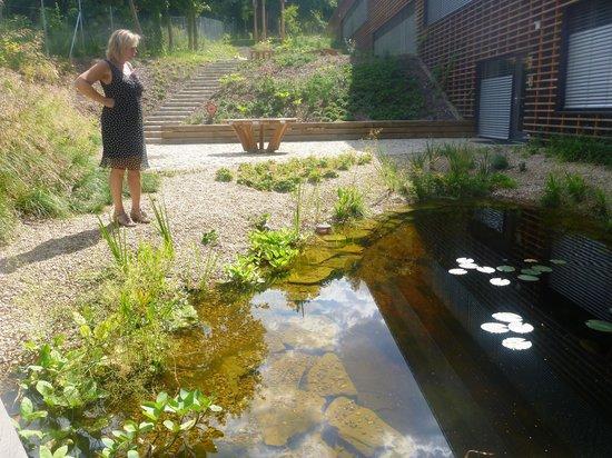 Open Gardens : mirroring the world around