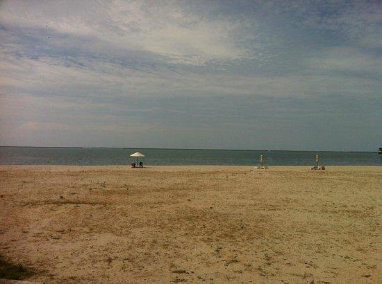 Century Langkasuka Resort: Пляж при отеле (купаться не возможно ,из-за илистого дня)