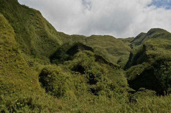 Uncharted Philippines Adventure Travel and Day Tours: lush tropical landscape
