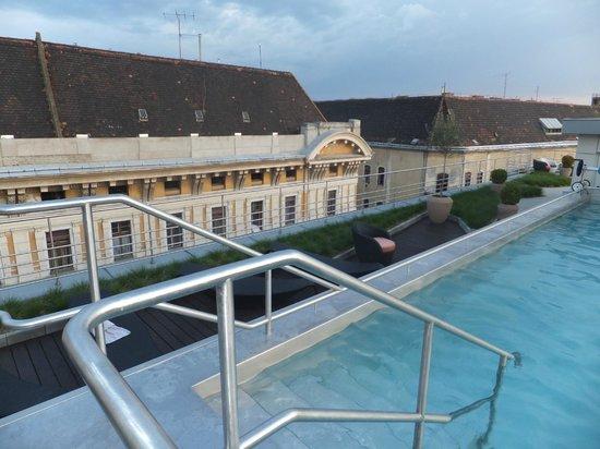 Continental Hotel Budapest: Jardim no terraço e piscina externa