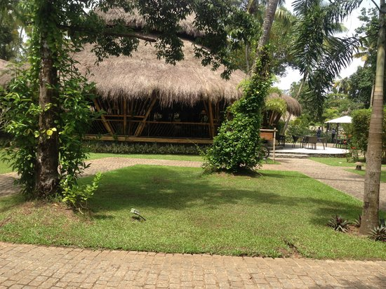 Carnoustie Ayurveda & Wellness Resort: The restaurant