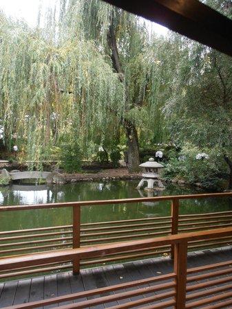 Hotel Marinela Sofia: sushi jardin